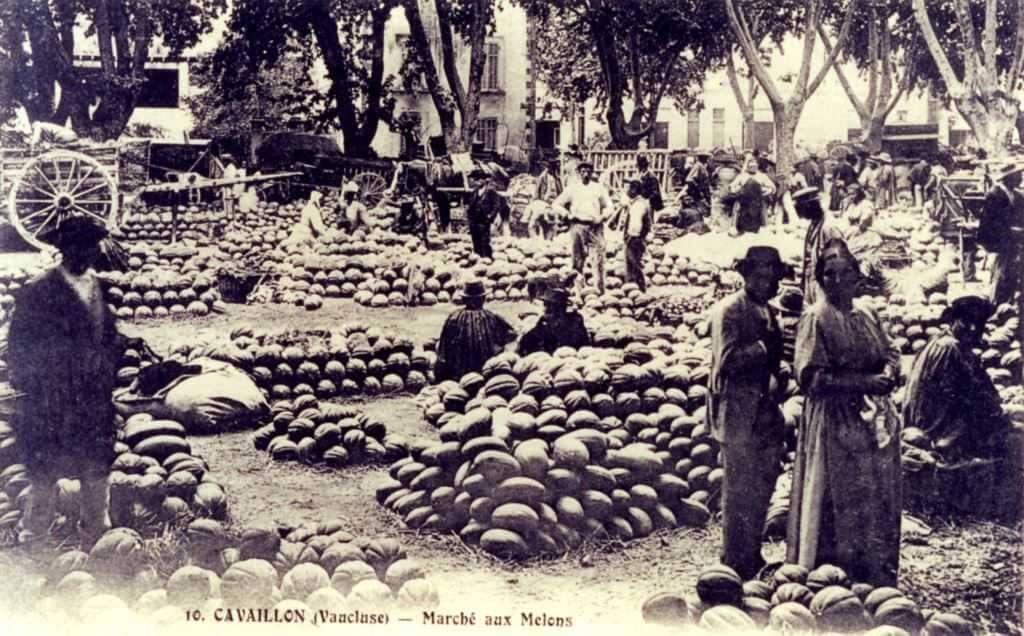 Photo d'archives Marché de Cavaillon